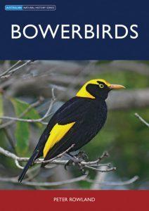 Bowerbirds book front cover showing a Regent Bowerbird