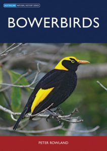Bowerbirds book front cover showing a Regent Bowerbird