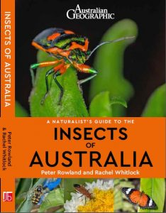 Cover of the book, A Naturalist's Guide to the Insects of Australia