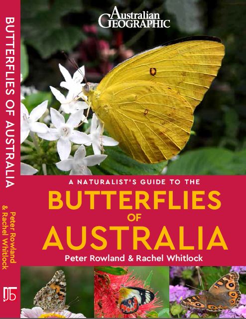 A Naturaliust's Guide to the Butterflies of Australia cover