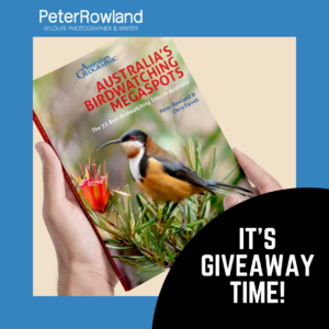 Hands holding the Australia's Birdwatching Megaspots book by Peter Rowland